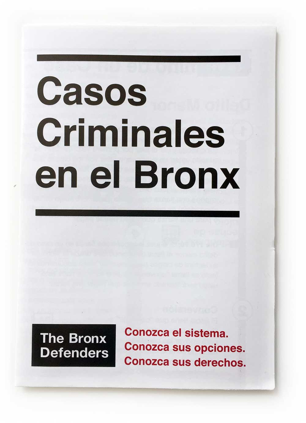 Bronx Defenders Brochure Outside
