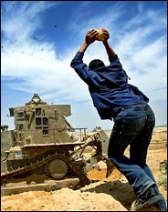 Palestinian throwing stone at D9
