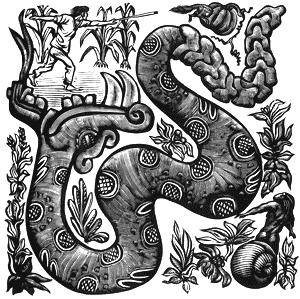 Mendez Snake